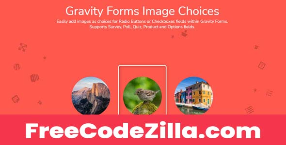 Gravity Forms Image Choices Free Download